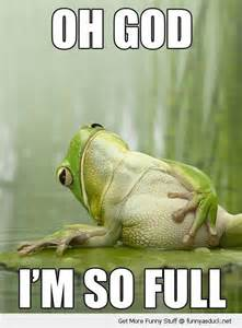 Fat frog animal lying down lily pad god so full sad funny pics