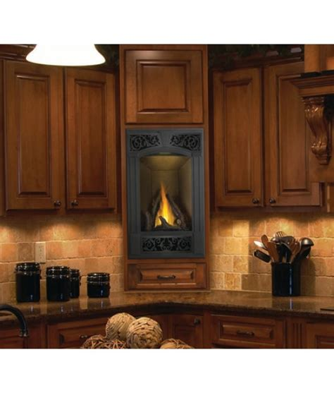 Napoleon Gas Fireplace Prices by Napoleon Fireplaces Gas Fireplaces