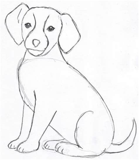 how to draw a puppy easy how to draw a easy pictures 4 brown hairs