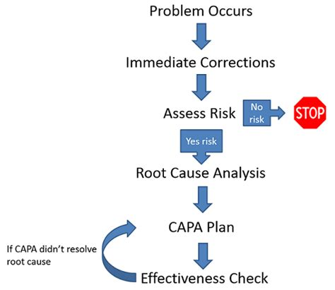Corrective And Preventive Action Plans Capa Template Clinical Research