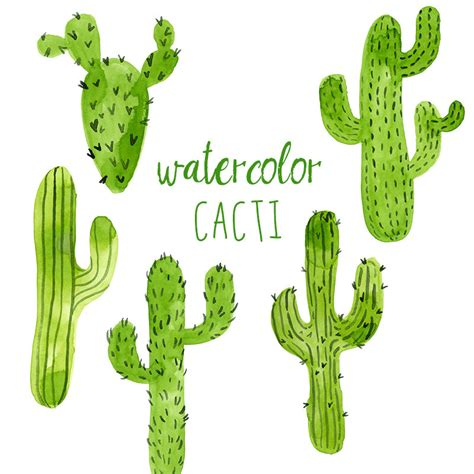 cactus clipart western clipart saguaro pencil and in color western
