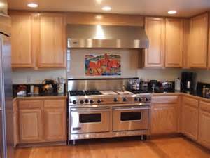 Kitchen Backsplash Examples by Examples Of Kitchen Backsplashes Kitchen Tile Murals