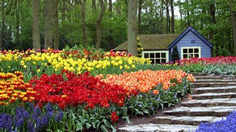 imagenes de jardines llenos de rosas jard 237 n con flores de colores 1920x1080 fondos de
