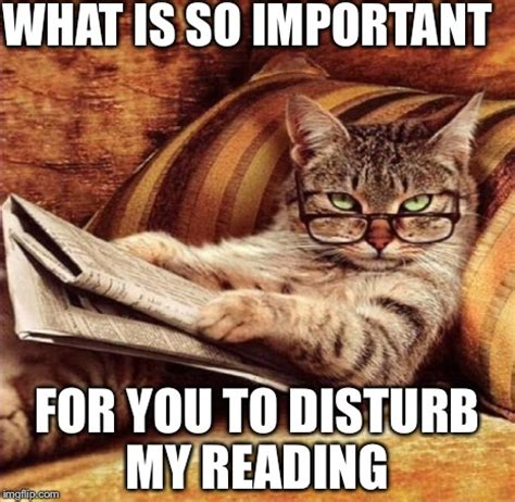 Reading Memes - reading meme 100 images 45 best reading memes images