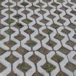 unkraut in pflasterfugen entfernen unkraut und moos aus pflasterfugen entfernen garten pflanzen