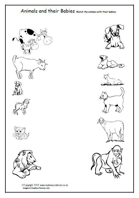 preschool baby animals coloring pages free animals and their babies children match the animals