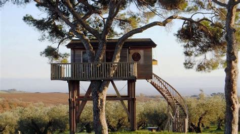 amazing ecoloft a house in the trees enpundit amazing tree houses for living youtube