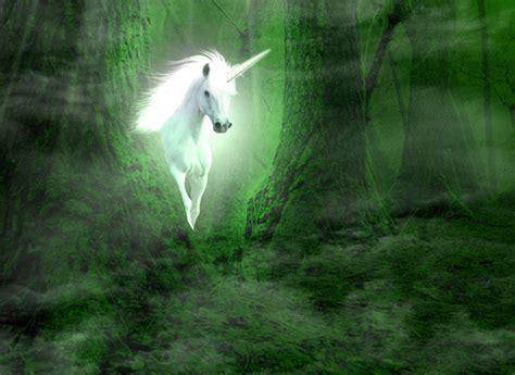 mundo maravilloso los volcanes 8467559144 el maravilloso mundo de los unicornios revista ciudadyoga