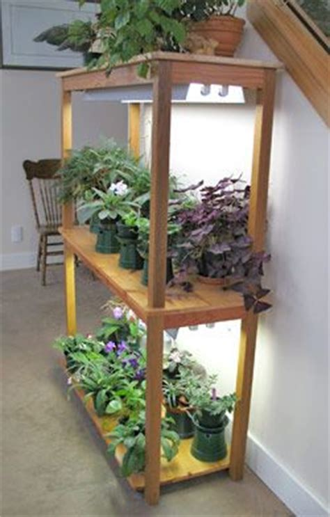 plants that grow in fluorescent light fluorescent light garden gardening indoors pinterest