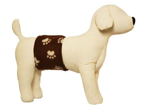 belly bands for dogs belly band for and incontinence