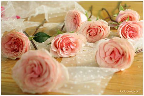 imagenes de rosas originales los 18 ramos de novia de rosas m 225 s originales y rom 225 nticos