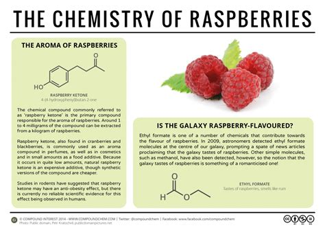 healthy fats chemistry compound interest raspberries weight loss the galaxy