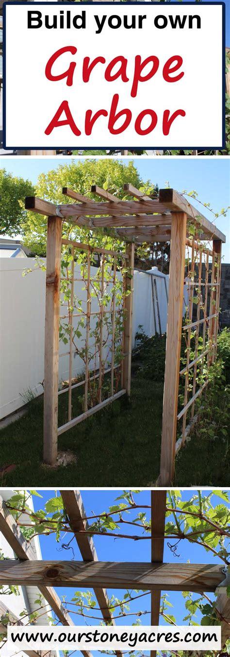 building a grape arbor stoney acres