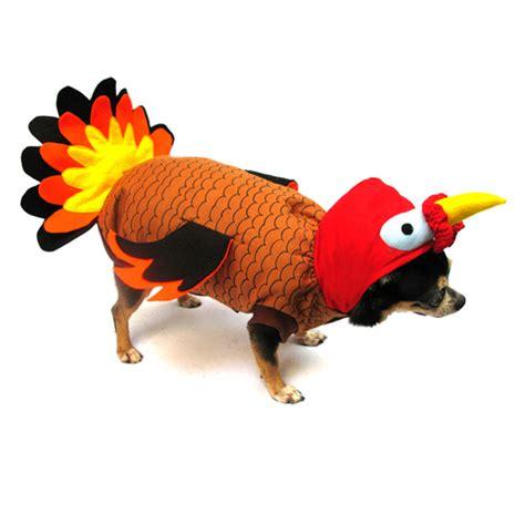 turkey for dogs turkey costume baxterboo