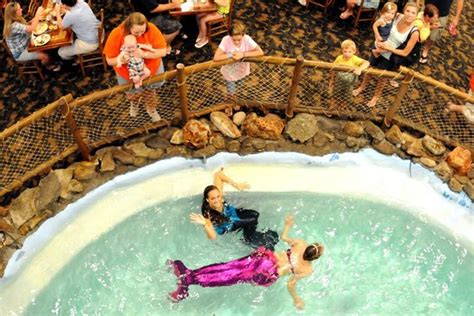 Live Mermaids Picture Of Seafood House Buffet Surfside Seafood House Buffet Myrtle