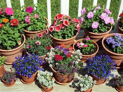 Pinterest Flower Garden Ideas Flower Pots Garden Ideas Gardens Pinterest