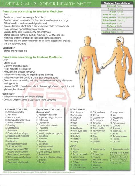 Pressure Points For Detox by 546 Best Acupunk Images On