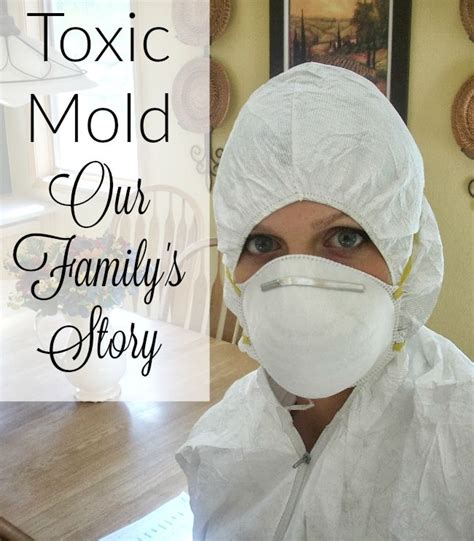 Mold Detox Timeline by 510 Best Health And Wellness Images On Adrenal