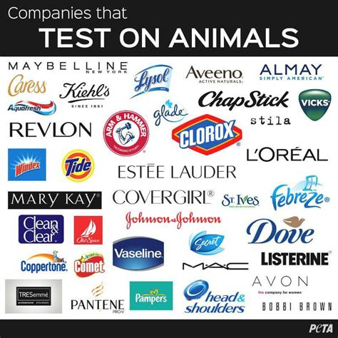store brands that don t test on animals stop animal