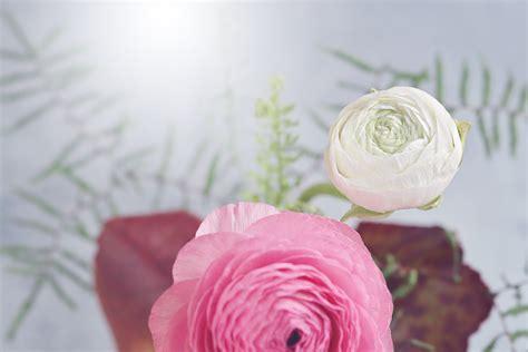 Mewah Walpaper Walpaper Dinding Stiker Bunga Putih Kmk 089 Size 45cm X gambar wallpaper bunga mawar pink gudang wallpaper