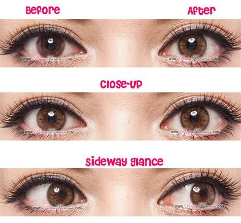 brown colored contacts gbt brown circle lenses colored contacts pinkyparadise