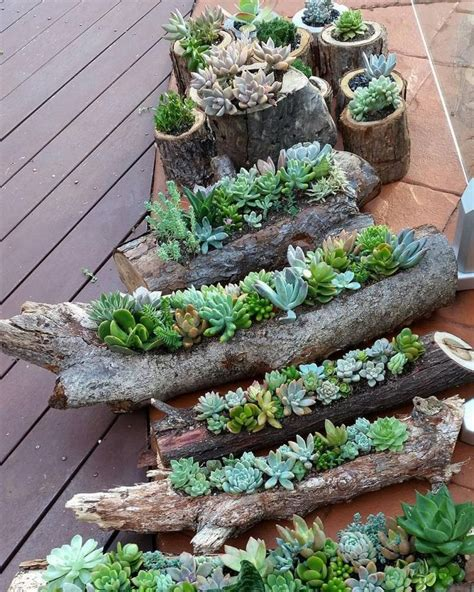 Tree Log Flower Planter by 25 Best Ideas About Log Planter On Garden