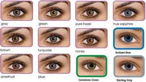 eye color calculator with grandparents eye colour chart домашние растения цветы
