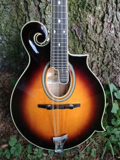 paris swing mandolin paris swing oval hole f style mandolin with tkl case reverb