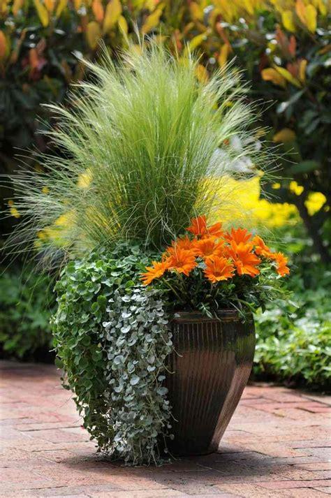 Deco Plante Exterieur by Pot Deco Exterieur Plante Pour Terrasse Avec Plantes