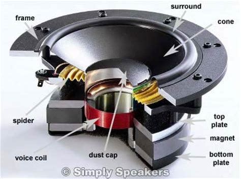 subwoofer components diagram faq and knowledge base