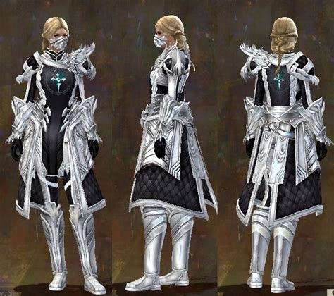2 rajput arms and armour the rathores and their armoury at jodhpur fort books gw2 guild armor and weapons guide dulfy