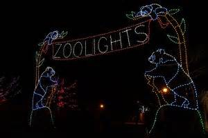 zoo lights jacksonville events st augustine and jacksonville 2015