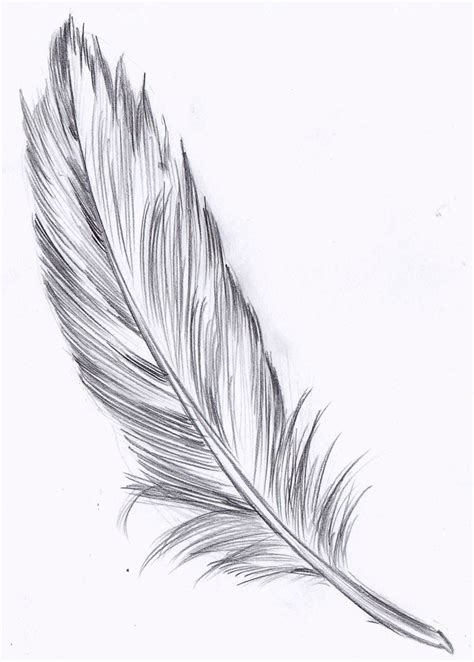feather tattoo how to draw 404 not found