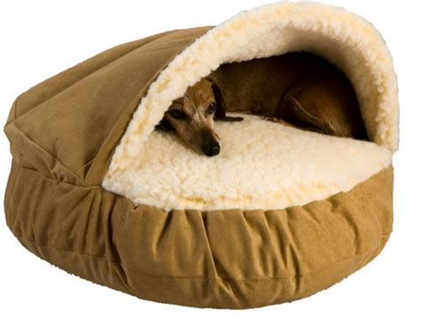 bed for dog best dog bed for dachshunds and other burrowers