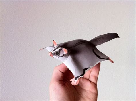 Origami Glider - the most rootinest tootinest flying paper sugar glider