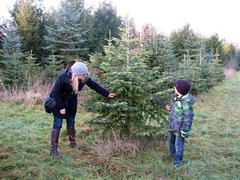 weihnachtsbaum verkauf uhlandhof im raum bad boll im