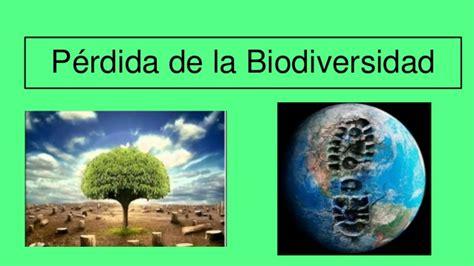 caida de hyperion la perdida de la biodiversidad