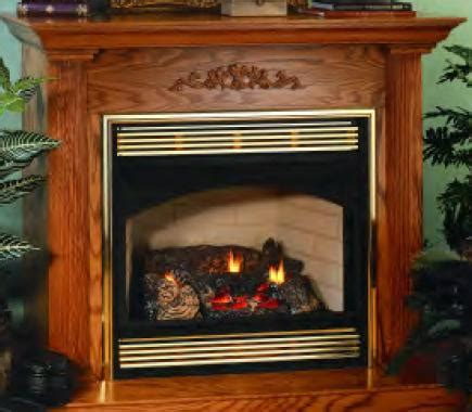Desa Fireplace Dealers by Vanguard Direct Vent Gas Stoves Best Stoves