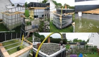 backyard aquaculture organic farming made standard with