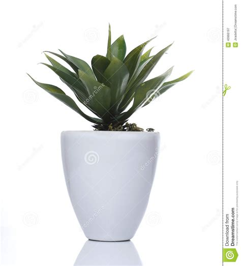 white pot artificial plant white pot stock photo image 40966197