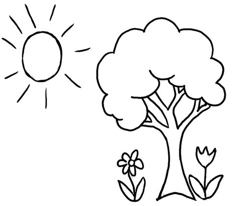 coloring pictures of flowers and trees tree with roots coloring page sketch coloring page