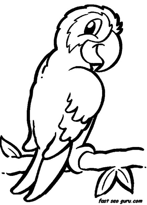 printable coloring pages jungle animals printable jungle bird parrot coloring pages printable