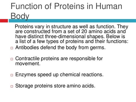 5 proteins and their functions protein