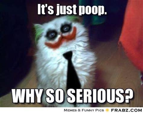 Meme Poop - pics for gt poop meme