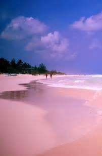 beaches with pink sand best 25 pink sand beach ideas on pinterest pink sand list of oceans and beach glow