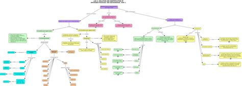 pseudomonas identification flowchart biochemical tests for identification of bacteria