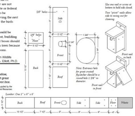 blue jay house plans blue jay bird house plans image mag