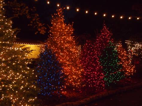 silver dollar city lights dates it isn t in branson until andy says it is been