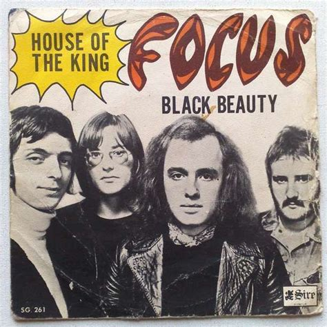 focus house house of the king black beauty by focus sp with palprod ref 115119153