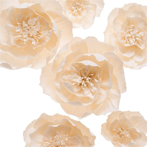 amazoncom large paper flower decor set pc event